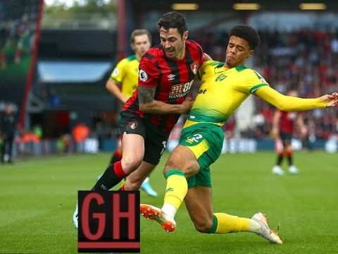 Bournemouth 0-0 Norwich - Watch goals and highlights football Premier League 2019-2020